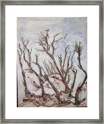 Winter Trees Framed Print by Helene  Champaloux-Saraswati