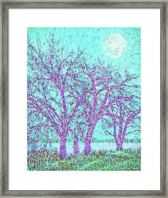 Framed Print featuring the digital art Winter Trees In Moonlight Blue - Boulder County Colorado by Joel Bruce Wallach