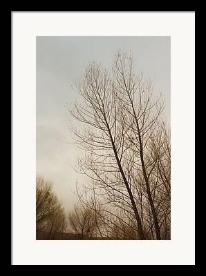 Verde River Framed Prints