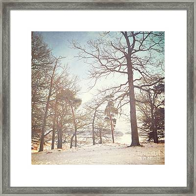 Framed Print featuring the photograph Winter Trees by Lyn Randle