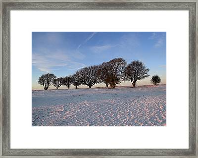 Winter Trees On The Ring Framed Print