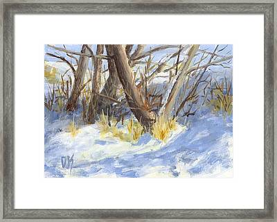 Winter Trunks Framed Print