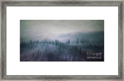 Winter View 2 Framed Print
