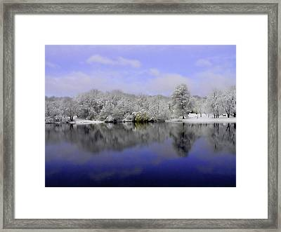 Winter View Framed Print by Karol Livote