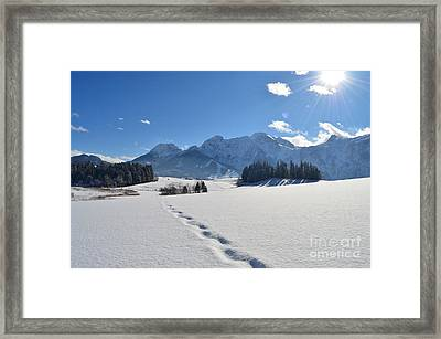 Winter Walk 2 Framed Print by Sabine Jacobs