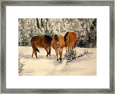 Winter Walk Framed Print by Andrea Birdsey Kelly