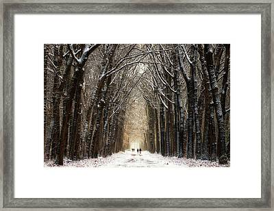 Winter Walk II Framed Print by Martin Podt