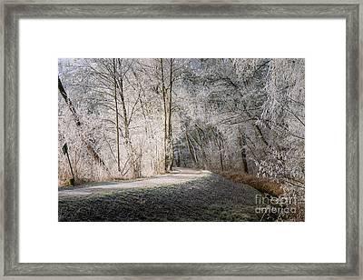 Winter Walk In Bavaria Framed Print by Juergen Klust