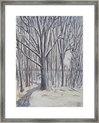 Winter Walk Framed Print by Robert P Hedden