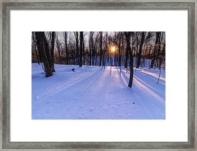 Winter Walks Continue Framed Print