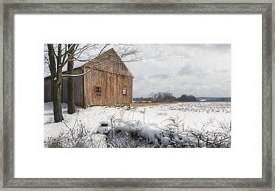 Winter Warmth Framed Print by Bill Wakeley