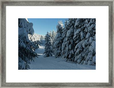 winter way in the Harz Framed Print by Andreas Levi