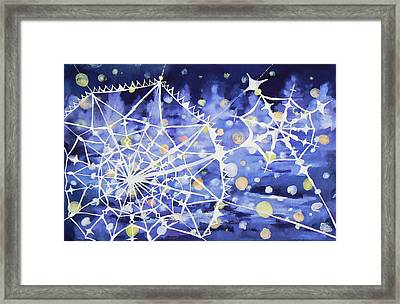 Winter Web Framed Print by Anastasia Michaels