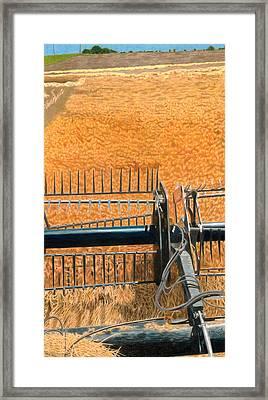 Winter Wheat Framed Print by Jodi Harsch