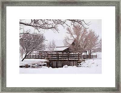 Winter White Framed Print by Donna Kennedy