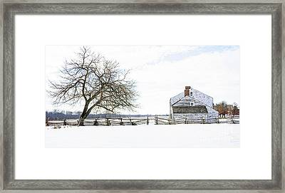 Winter White Out Framed Print by Debra Fedchin