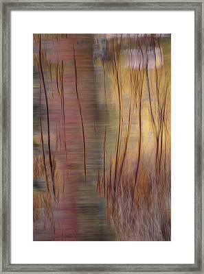 Framed Print featuring the photograph Winter Willows Abstract by Deborah Hughes