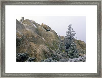 Winter Wind Framed Print by Soli Deo Gloria Wilderness And Wildlife Photography