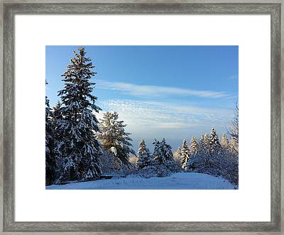 Winter Wonder  Framed Print by Natalie Barrow