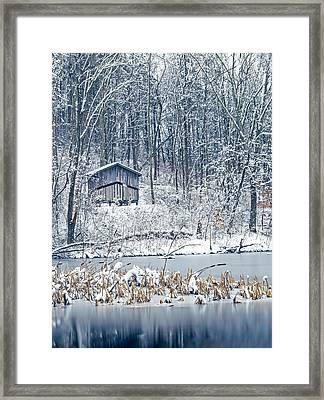 Winter Wonderland 1 Framed Print