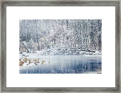 Winter Wonderland 2 Framed Print by SharaLee Art
