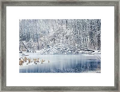 Winter Wonderland 2 Framed Print