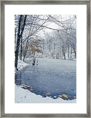 Winter Wonderland 3 Framed Print by SharaLee Art