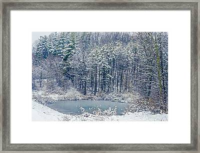 Winter Wonderland 4 Framed Print by SharaLee Art