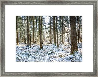 Framed Print featuring the photograph Winter Wonderland by Hannes Cmarits