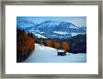 Winter Wonderland In Switzerland - Sunset Light In The Trees Framed Print