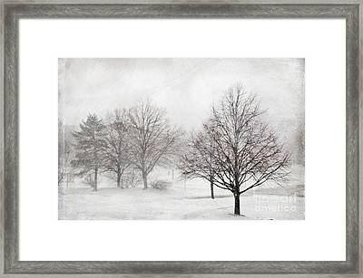 Winter Wonderland Framed Print by Maria Aiello