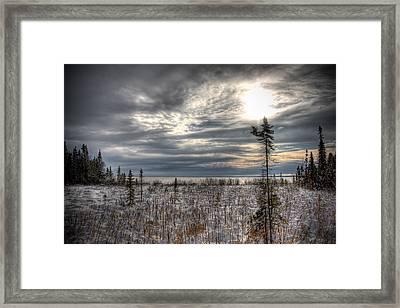 Winter Wonderland Framed Print by Michel Filion