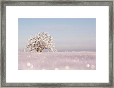 Winter Wonderland Framed Print by Roeselien Raimond