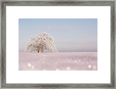 Winter Wonderland Framed Print by Roeselien Raimond