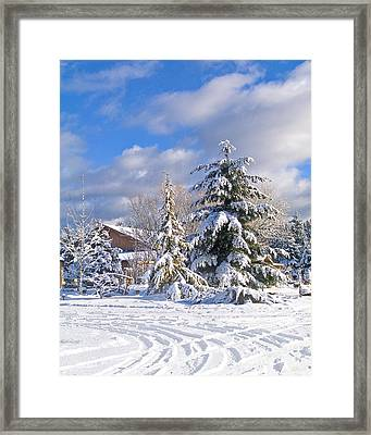 Winter Wonderland Framed Print by Wilbur Young