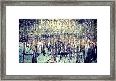 Winter Woods Aglow Framed Print