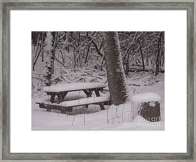 Winter Woods Framed Print by Deborah Finley