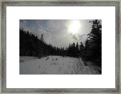 Winter Woods Framed Print by Eric Workman