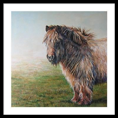Welsh Cob Art | Fine Art America