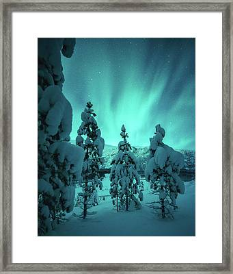 Winterland Framed Print
