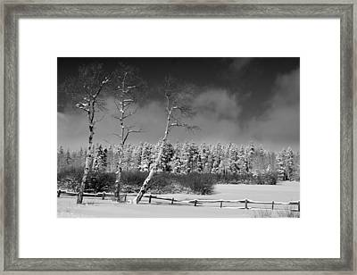 Framed Print featuring the photograph Winters Allure.. by Al Swasey