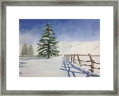 Winter's Beauty Framed Print