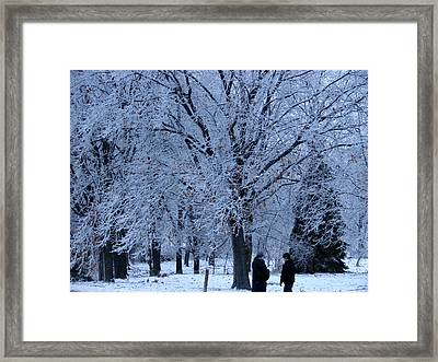 Winters Beauty Framed Print by Dave Clark