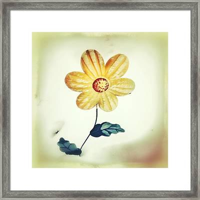 Winters Bloom Framed Print