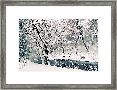 Winter's Charm Framed Print by Jessica Jenney