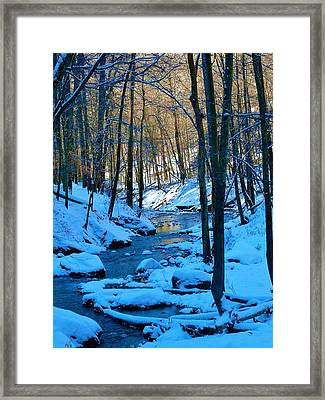Winter's Cold Touch Framed Print