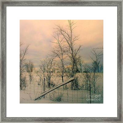 Framed Print featuring the photograph Winter's Face by Elfriede Fulda