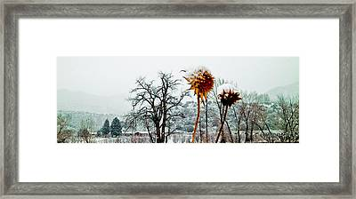 Winters Field Framed Print