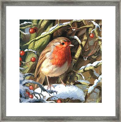 Winters Friend Framed Print
