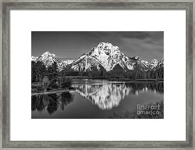 Winter's Last Hold Framed Print by Sandra Bronstein